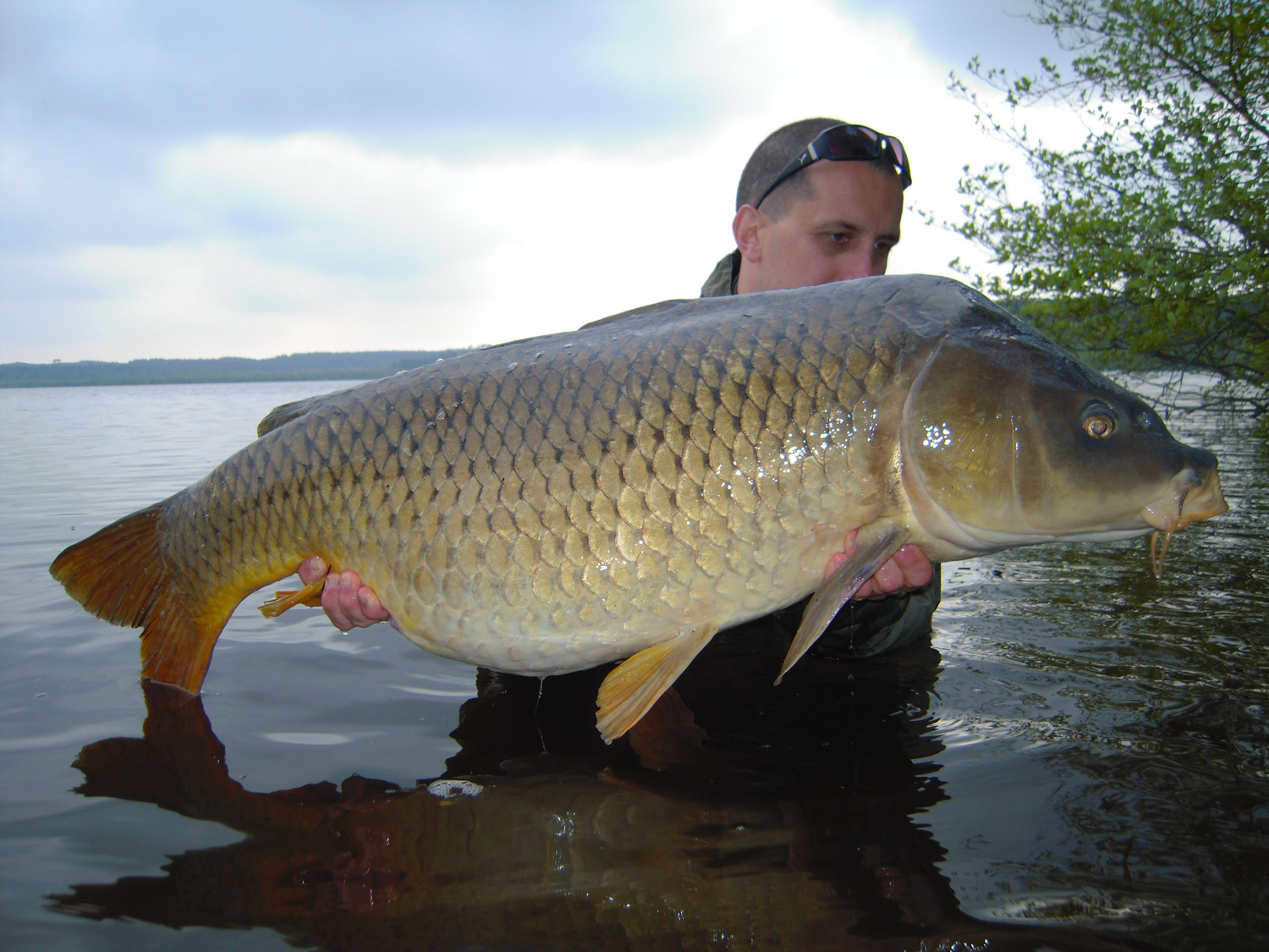 http://www.starbaits.com/fichiers/images/team/gallery/COLLET_Jerome/8 Jérôme Collet.jpg