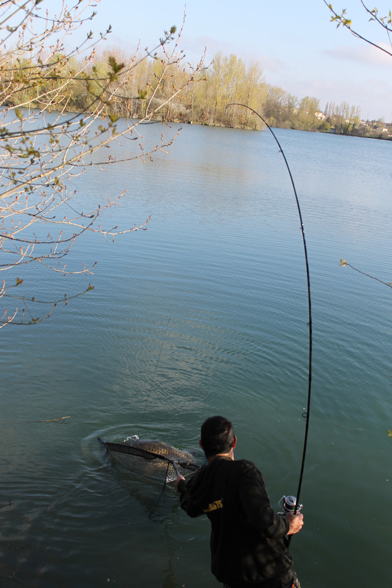 http://www.starbaits.com/fichiers/images/team/gallery/DUCERE_Cedric/1-DUCERE-CEDRIC.JPG