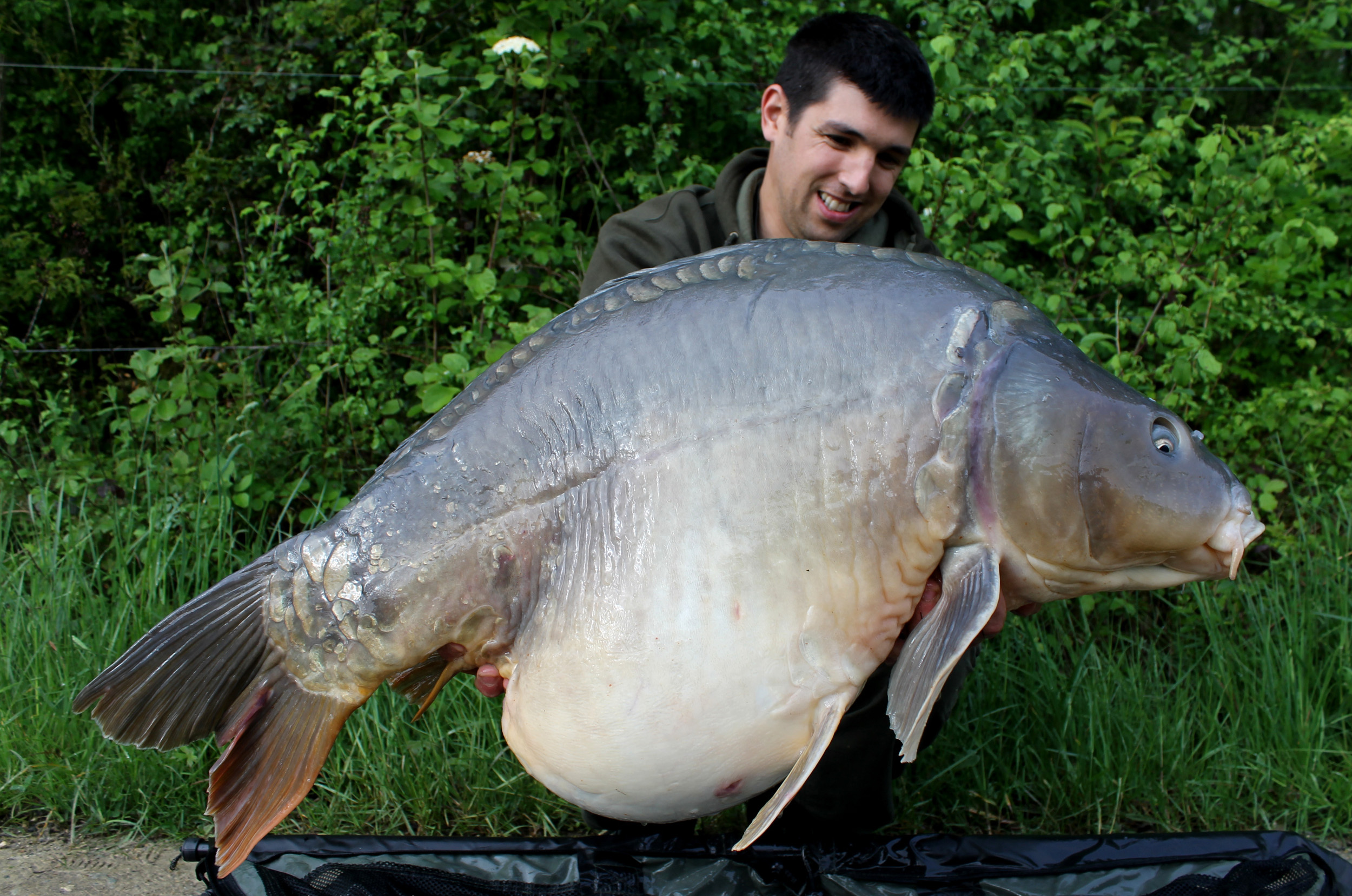 http://www.starbaits.com/fichiers/images/team/gallery/DUCERE_Cedric/11-DUCERE-CEDRIC.jpg