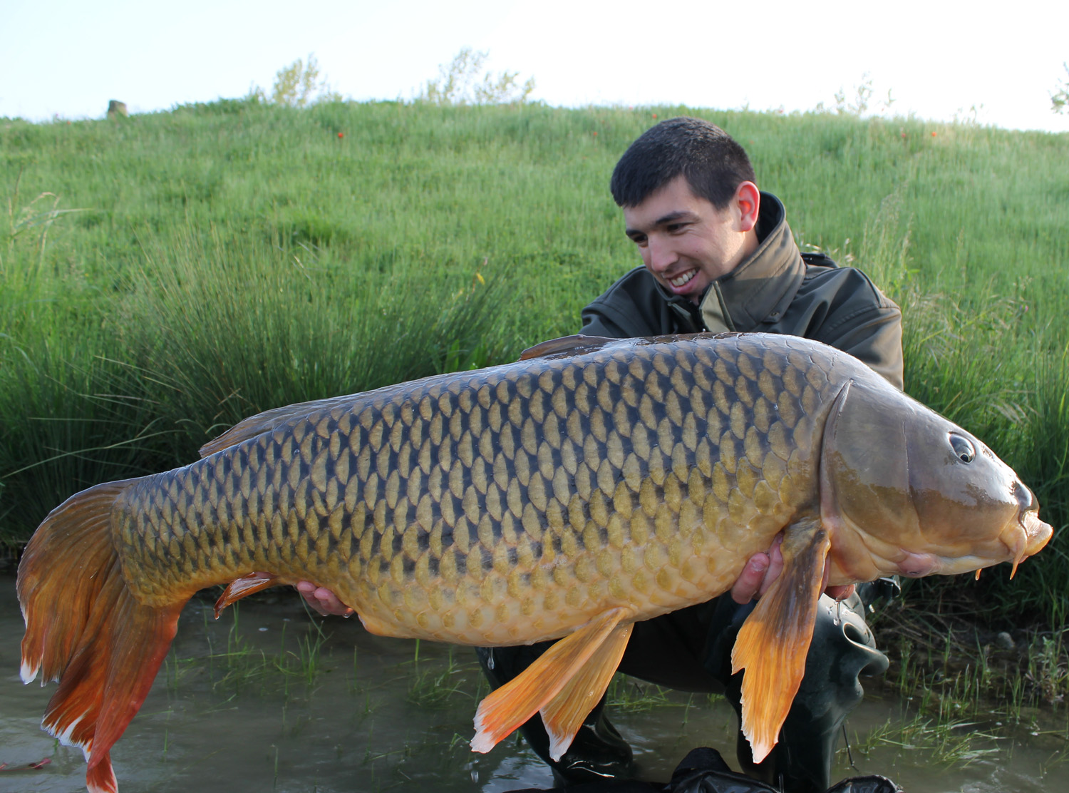 http://www.starbaits.com/fichiers/images/team/gallery/DUCERE_Cedric/6-DUCERE-CEDRIC.JPG