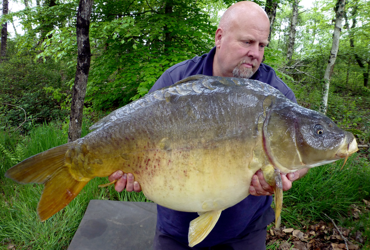 http://www.starbaits.com/fichiers/images/team/gallery/SUDRE_Bruno/1 (14).jpg